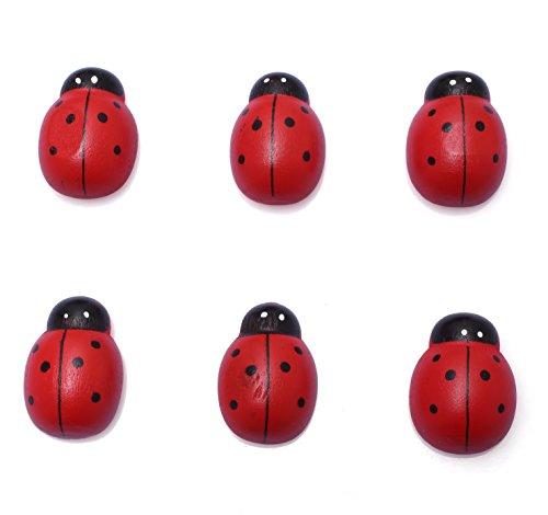 6-Set Wood Refrigerator Magnets, Fridge Magnets, Fridge Magnet, Refrigerator Magnet, Cute Magnets (6 Big Ladybug)