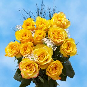 GlobalRose 1 Dozen Yellow Roses & Fillers - Pleasantly Charming! (Long One Dozen Stem)