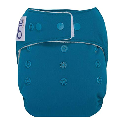 GroVia O.N.E. Reusable Baby Cloth Diaper (Abalone)