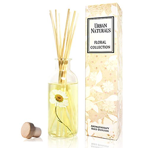 (Urban Naturals Gardenia Floral Scented Reed Diffuser Sticks with Dried Chrysanthemum Flower   Add Charm to Your Home Decor! Jasmine, Ylang Ylang, Tuberose & Amber Notes   Vegan. Made in The USA)