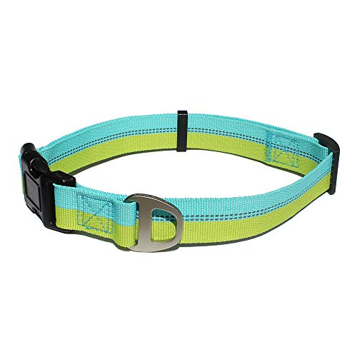 - Leepets Reflective Nylon Dog Collar with Adjustable Buckle Fashion Stripe Dog Collar, Blue/Lime Green Striped, Medium, 3/4 Inch Wide