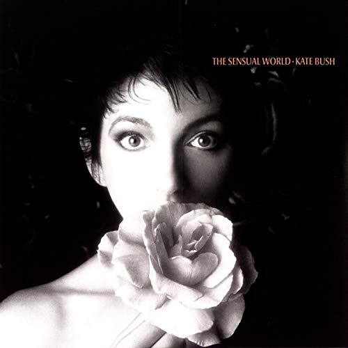 Looking for a kate bush vinyl sensual world? Have a look at this 2020 guide!