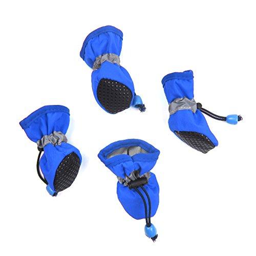 Alfie Pet by Petoga Couture - Hudson All Weather Set of 4 Dog Boots - Color: Blue, Size: Medium (Boots Designer Dog)