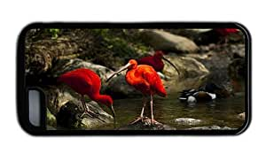 Hipster brand new iPhone 5C cover ibis birds TPU Black for Apple iPhone 5C by mcsharks