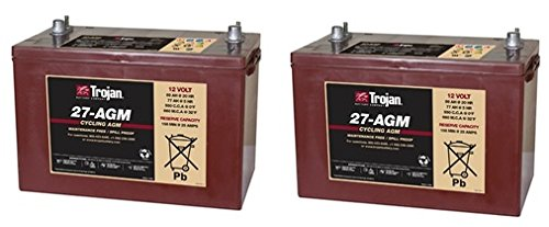Replacement For KARCHER BD 40/25 C BP 24 VOLTS 2 PACK Battery