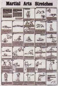 Amazon.com: Martial Arts Stretches Poster Chart: Posters