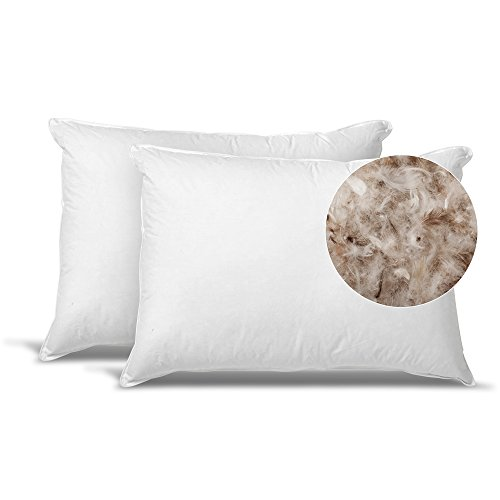 Down Feather Bed Pillows Exceptionalsheets