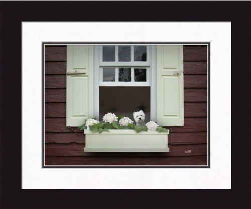 Ron Schmidt Framed Photograph - Westie Windowbox