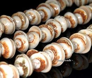 Spiral Shell Gemstone Brown Cream Spiral Swirl Corkscrew 15X7MM Loose Beads 7