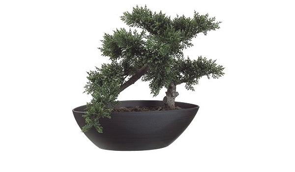 Amazon Com 14 Artificial Cedar Silk Bonsai Tree W Plastic Pot Pack Of 4 Home Kitchen