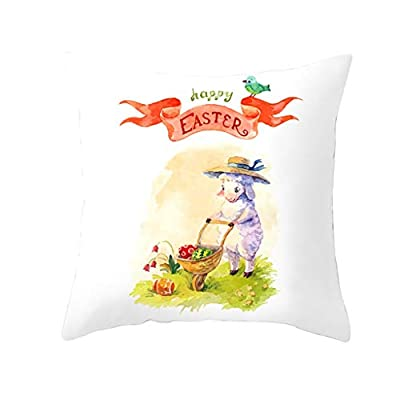 Daorokanduhp Bunny Rabbit Spring Greetings Flowers New Home Office Decorative Throw Pillow Case Cushion Cover Square 18x18inch: Toys & Games