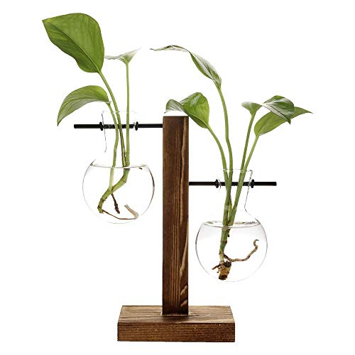 (Takefuns Hydroponic Vase Vintage Desktop Plant Terrarium Planter Bulb Vase Water Planting Propagation Glass Vase Libra Planter Hydroponics Plants with Retro Wooden Stand Home Garden Wedding Decor)