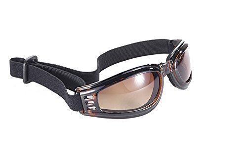 Kickstart Nomad Amber Gradient Lens Tortoise Shell Frame Goggles w/ Strap