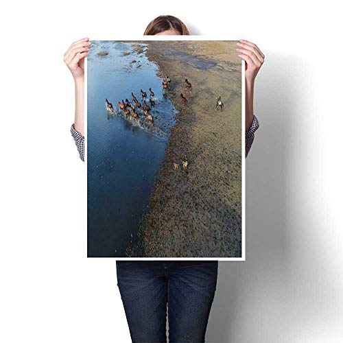 smllmoonDecor Wall hangings Wild Horses of Anatolia Aerial View Photography Decorative Fine Art Canvas Print Poster K 32