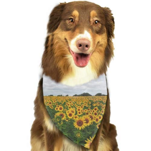 Pet Dog Bandana Triangle Bibs Scarf Montane Sunflower Accessories for Dogs Cats Pets Animals