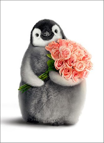Penguin With Flower Bouquet Funny Valentine's Day Card ()