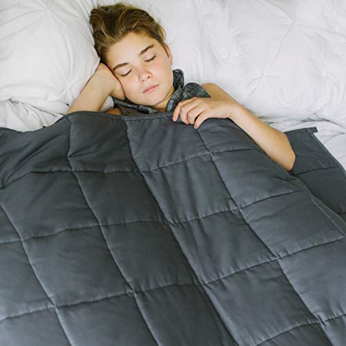 Weighted Blanket From Home Smart*