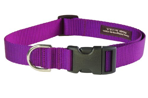 Large Purple Nylon Webbing Dog Collar: 1″ wide, Adjusts 18-28″ – Made in USA., My Pet Supplies