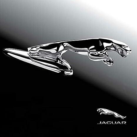 Chrome Metal Car Front Hood Ornament Sticker Badge Decal Emblem FIT FOR Jaguar