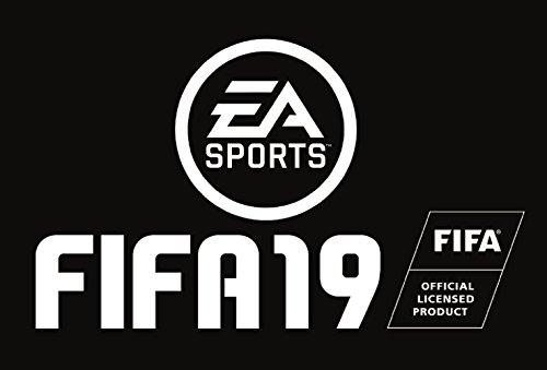 FIFA19 STANDARD EDITION