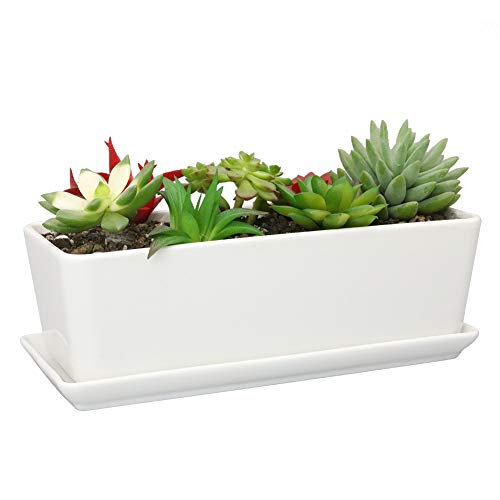 SQOWL 10 inch White Rectangle Ceramic Succulent Planter Pot Modern Flower Cactus Herb Big Planter with Removable Saucer Indoor or Outdoor