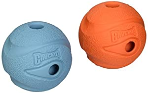 85%OFF Whistle Ball