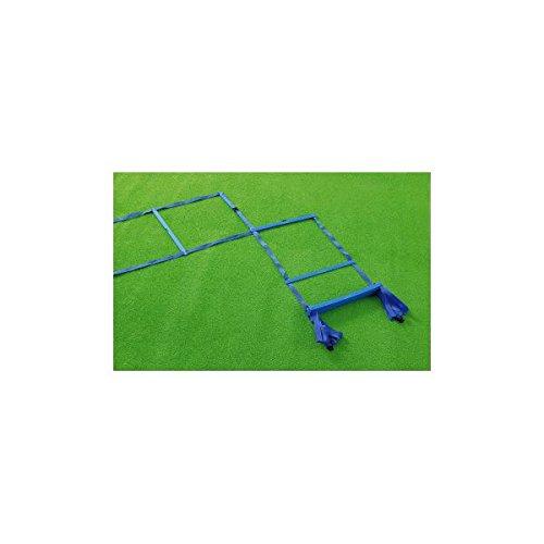 生活日用品 スポーツ用品 ラダートレーナーDX MLDDX(屋内外兼用) B07566GXZ1