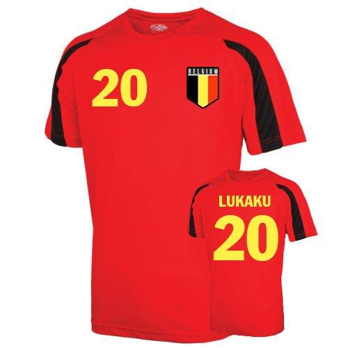 Belgium Sports Training Jersey (kompany 4) Kids B078BCT2FQRed XSB (3-4 Years)