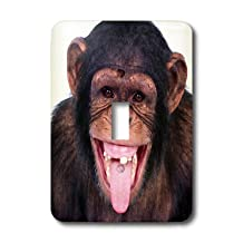3dRose lsp_23449_1 Laughing Monkey Single Toggle Switch