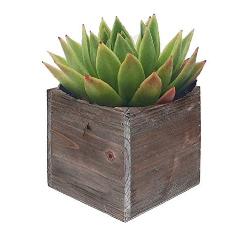 CYS EXCEL Planter Cubic Box, Wood Planter, Decorative Craft Box, Succulent and Floral Arrangements, Wood Cube Box, Wood Planters with Removable Zinc Liner 8 Inch Cube (Pack of 1) (Table Zinc Dining Outdoor)