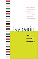 Why Poetry Matters (Why X Matters Series)