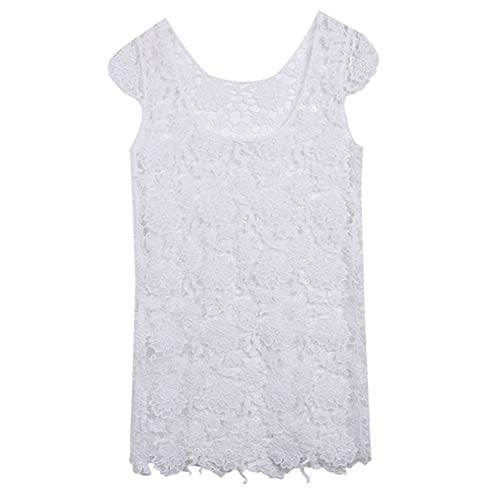 (two- Women Bikini Dress Sexy Bikini Cover Up Lace Embroidery Hollow Out Crochet Beach Cover Up Summer Robe,As Photo Shows,L)