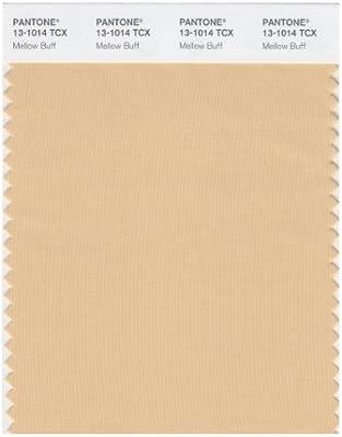 Amazon.com: Pantone Smart color Swatch tarjeta, 13-1014X ...