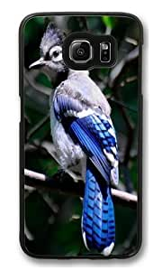 Blue Jay Bird Animal PC Case Cover for Samsung S6 and Samsung Galaxy S6 Black