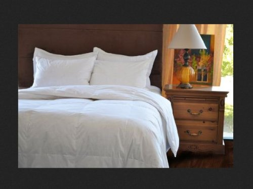 Natural Comfort Classic White Goose Feather Comforter, Queen Size (Classic Natural Home)