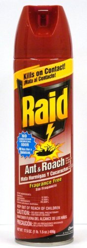 Raid Ant & Roach Killer, Fragrance Free, 17.5-Ounce Cans (Pack of 6)