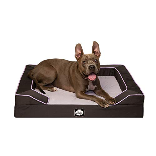 Sealy Dog Bed Sealy Lux Lavender Dog Bed | Lavender Infused Memory Foam top with Orthopedic Foam Base, Machine Washable Bottom, Medium