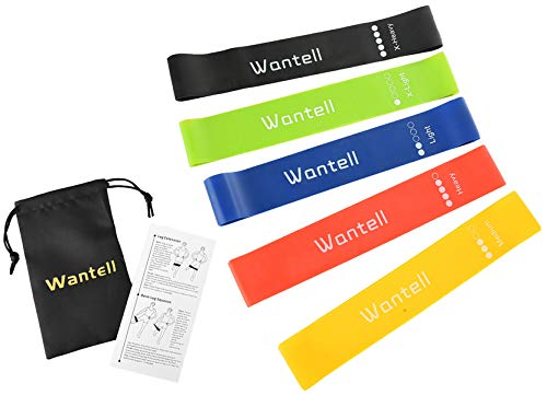Wantell Exercise Bands Pack of 5 Resistance Loops Instruction Guide Exercise Band Carry Bag Exercise Band 5 Resistance Level 5 Color Resistance Loop Bands 12in Resistance Loops