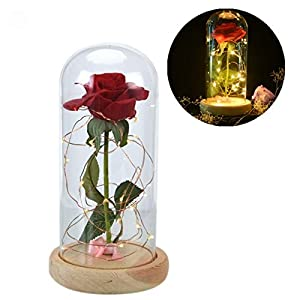 Decor Wooden - 1pcs Artificial Dried Flowers Beauty The Beast Red Rose In A Clear Glass Dome On Wooden Base - Luggage Snow Poster Favors Dress Globe Brushes Kids Cases Frame Mask Dunn To 39