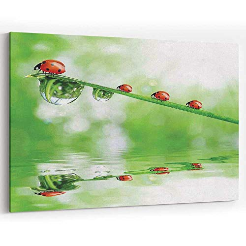 Ladybugs Canvas Art Wall Dector for Modern Home Decor Stretched and Framed Ready to Hang,36