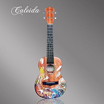 X-XIN Pintado A Mano Pintura Guitarra Principiante Especialmente Kerry.