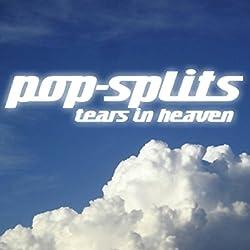 Tears in Heaven (Pop-Splits) 21 traurige und schöne Geschichten