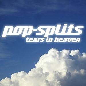 Tears in Heaven (Pop-Splits) 21 traurige und schöne Geschichten Hörbuch
