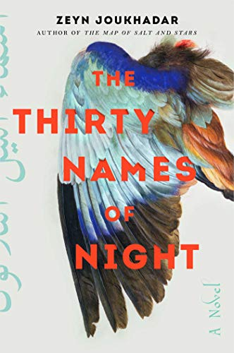 Book Cover: The Thirty Names of Night: A Novel