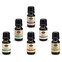 Aromatherapy Top 6 Essential Oil Gift Set Sampler Kit – 100% Pure Therapeutic Grade – Fabulous Frannie 6/10 Ml (Peppermint, Sweet Orange, Lavender, Tea Tree, Eucalyptus and Rosemary)…