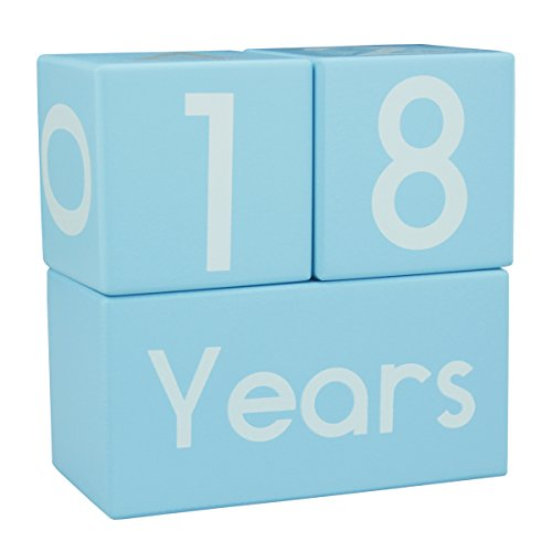 CICINY Age Blocks for Baby Pictures Wood Newborn Photography Props and Milestone Keepsake Gifts to Boy Girl Baby Or Pets (Blue) by CICINY (Image #7)