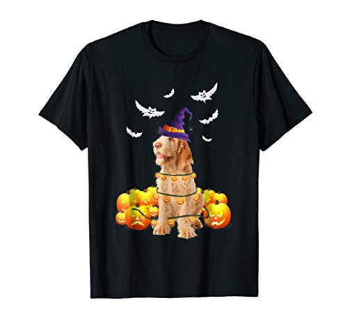 Spinone Italiano Dog Pumpkin Light Up Halloween T-Shirt -