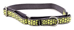 PetSafe Fido Finery Martingale-Style Dog Collar, 1-Inch, Medium, Dotted Bliss