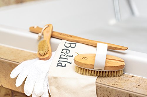 Premium Dry Brushing Body Brush Set- Natural Boar Bristle Body Brush, Exfoliating Face Brush & One Pair Bath & Shower Gloves. Free Bag & How To – Great Gift For A Glowing Skin & Healthy Body by Belula (Image #5)