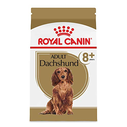 - Royal Canin Breed Health Nutrition Dachshund 8+ Adult Dry Dog Food, 3-Pound